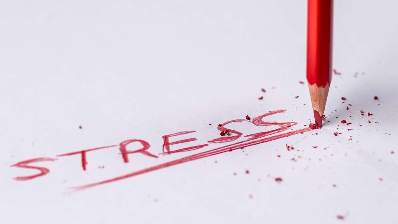 5 questions pour apprivoiser le stress